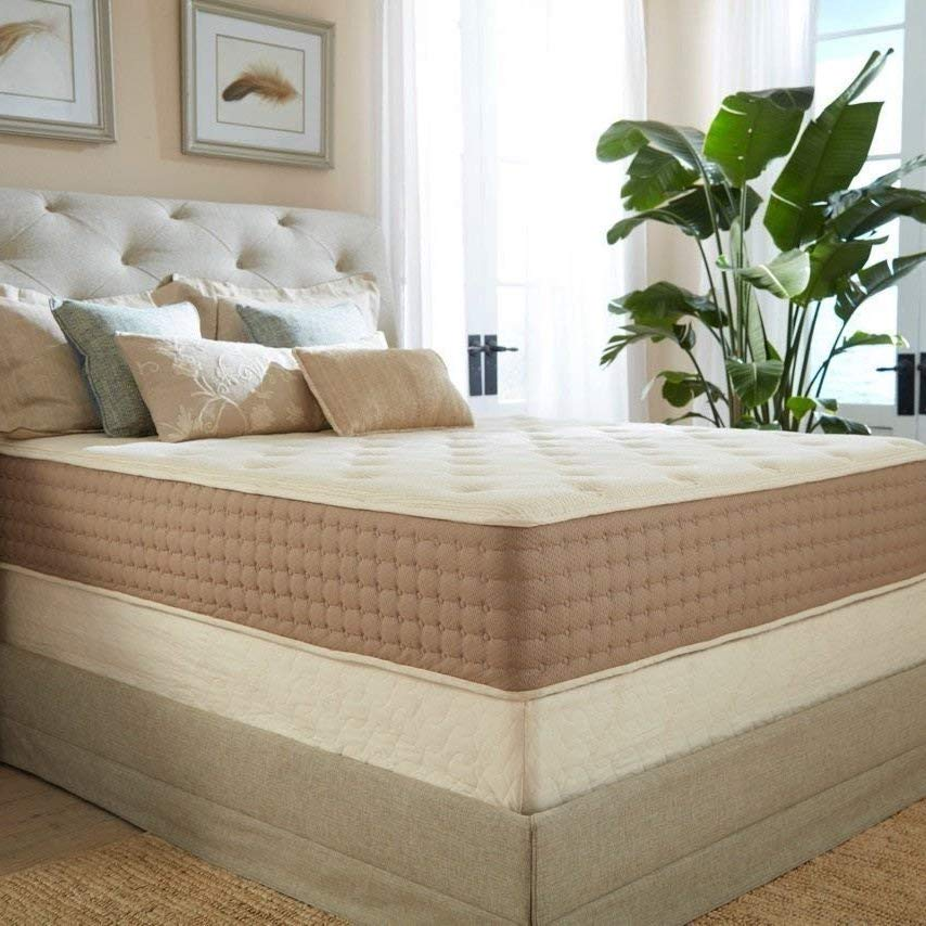 Eco Terra 11-Inch Queen Hybrid Mattress