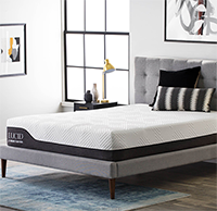 Lucid 12 Inch Latex Hybrid Mattress