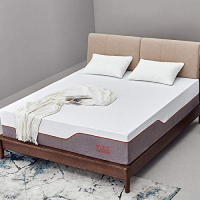 Tuft and Needle Queen Mattress