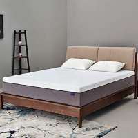 SSectretland 12 In Gel Memory Foam Mattress