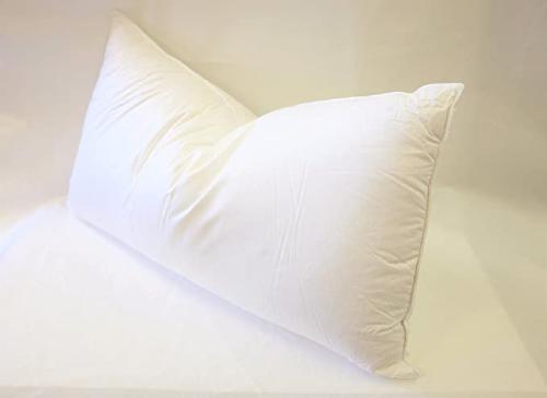 East Coast Bedding European White Goose Down Pillow